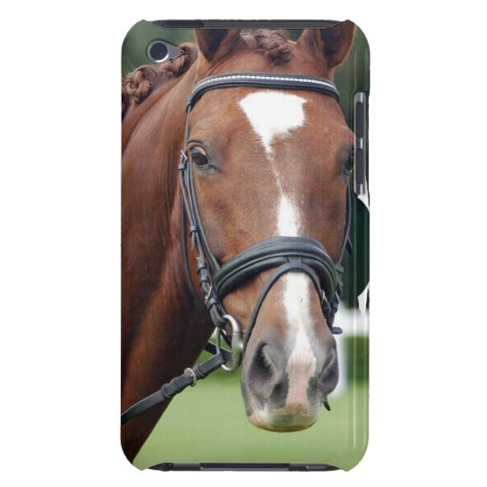 Braided Horse Mane iTouch Case