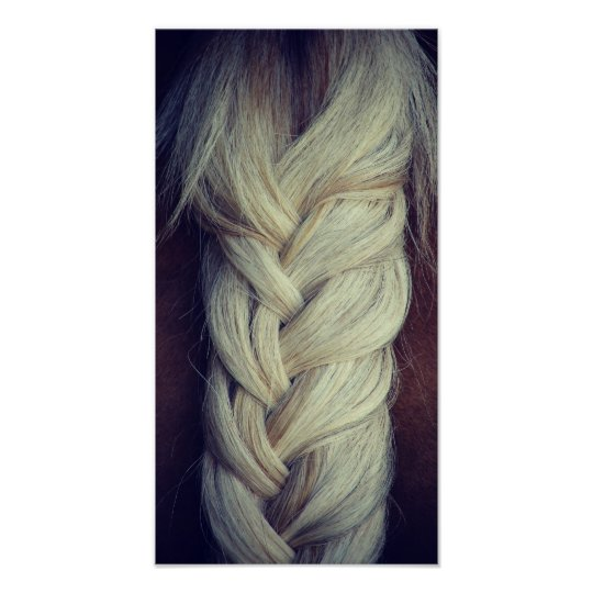 Braided Tail Poster