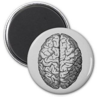 Brain 6 Cm Round Magnet