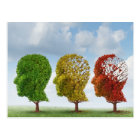 Brain Aging Postcard