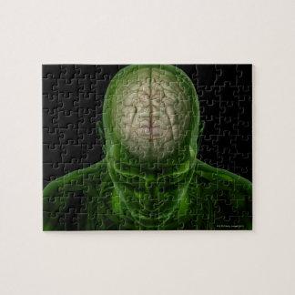 Brain Arteries Jigsaw Puzzle