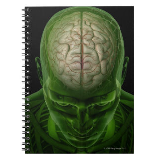 Brain Arteries Spiral Notebook