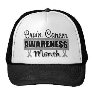 Brain Cancer Awareness Month Gray Ribbon Hat