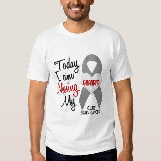 Brain Cancer Missing Miss My Grandpa 1 T-shirts