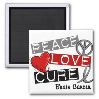 Brain Cancer PEACE LOVE CURE 1 Fridge Magnet