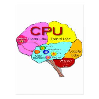 Brain CPU light Post Card