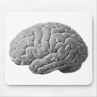 Brain Gifts Mouse Mat