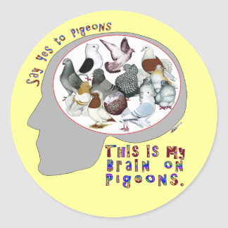 Brain On Pigeons Classic Round Sticker