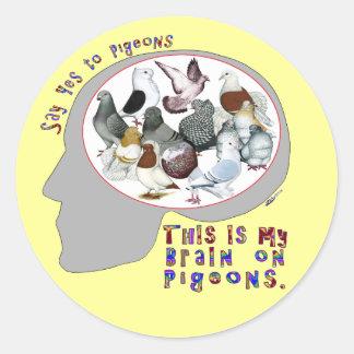 Brain On Pigeons Round Sticker