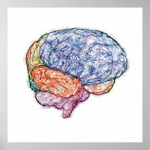 brain poster
