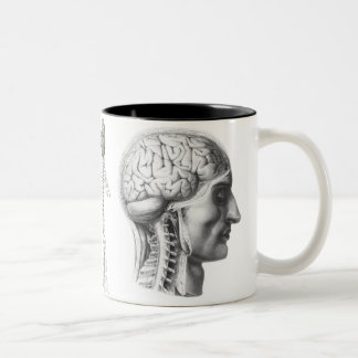 brain revealed Two-Tone mug