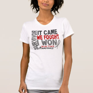 Brain Tumor Survivor It Came We Fought I Won T-Shirt