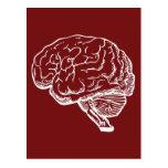 Brainiac Post Cards