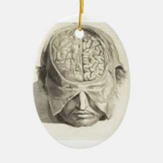 Brains Ceramic Oval Decoration