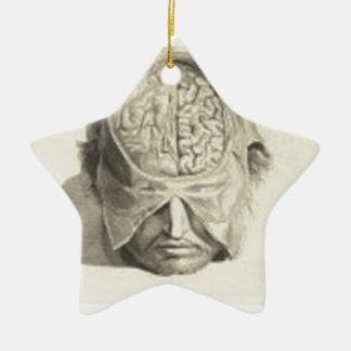 Brains Ceramic Star Decoration