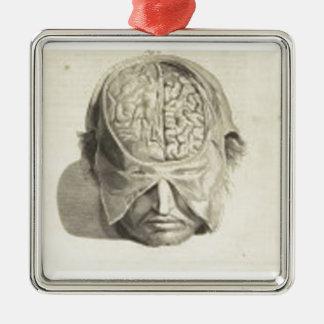 Brains Silver-Colored Square Decoration