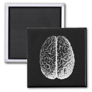 Brains! Square Magnet