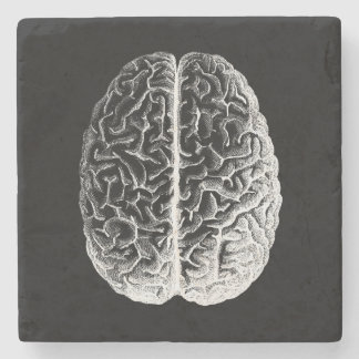 Brains! Stone Coaster