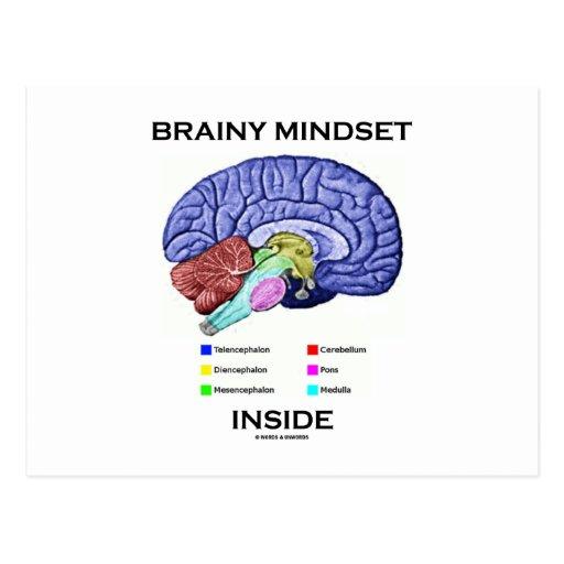 Brainy Mindset Inside (Anatomical Brain) Post Cards