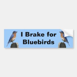 Brake for Bluebirds 2 Bumper Sticker