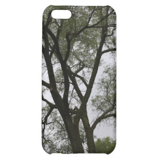 Branch out! Tree landscape. iPhone 5C Covers