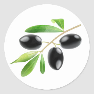 Branch with black olives classic round sticker