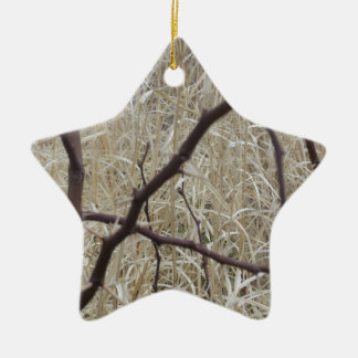 Branches and Dry Grass Ceramic Star Decoration