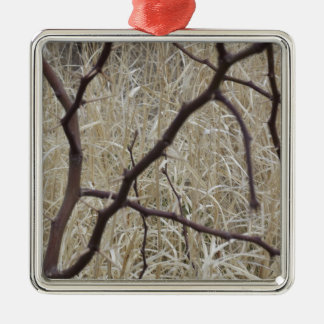 Branches and Dry Grass Silver-Colored Square Decoration