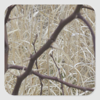 Branches and Dry Grass Square Sticker