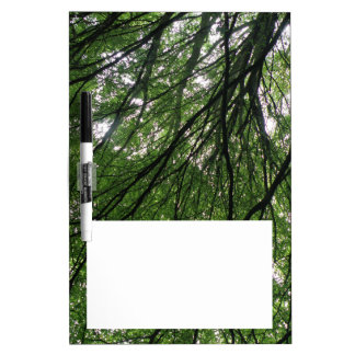 Branches and Leaves Memo Board