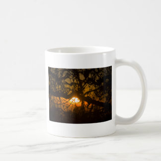 Branches And Twigs Mugs