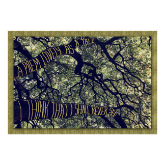 Branches Of A Big Oak Tree A Poem Lovely As A Tree Print