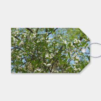 Branches of Dogwood Blossoms Spring Trees Gift Tags