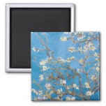 Branches with Almond Blossom Van Gogh Square Magnet