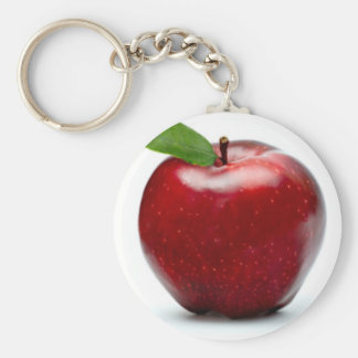 BRANDED BASIC ROUND BUTTON KEY RING