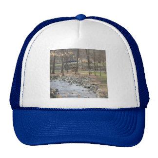 Brandywine Creek Gazeebo Cap Trucker Hat