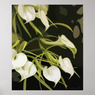 Brassavola Orchid Art Print