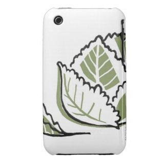 Brassica Oleracea iPhone 3 Cases