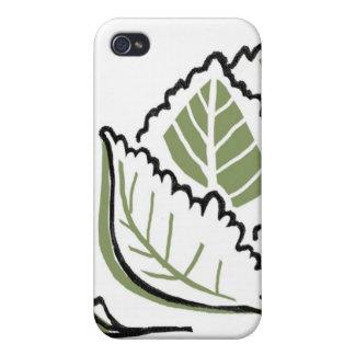 Brassica Oleracea iPhone 4/4S Case