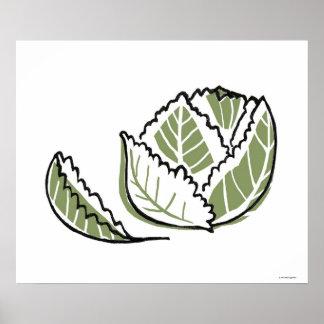 Brassica Oleracea Poster