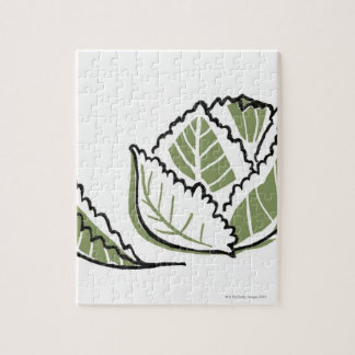 Brassica Oleracea Puzzle