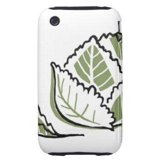 Brassica Oleracea Tough iPhone 3 Cover