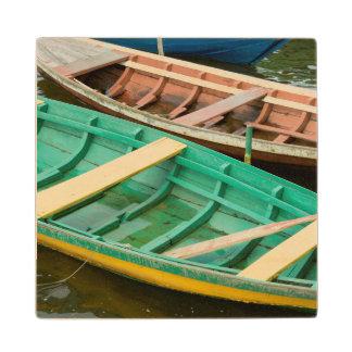 Brazil, Amazon, Alter Do Chao 2 Wood Coaster