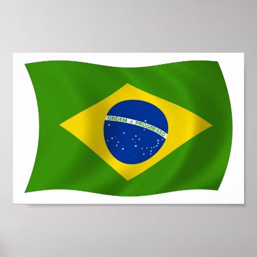 Brazil Flag Poster Print