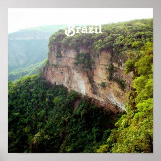 Brazil Rainforest Poster