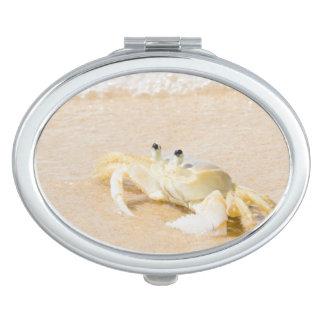 Brazil, Rio de Janeiro, Buzios, Crab on Compact Mirrors