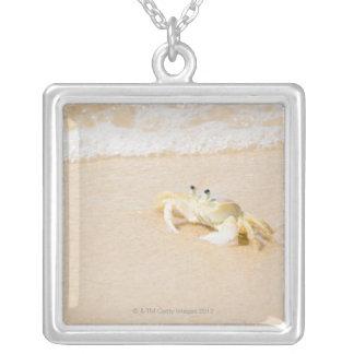 Brazil, Rio de Janeiro, Buzios, Crab on Silver Plated Necklace