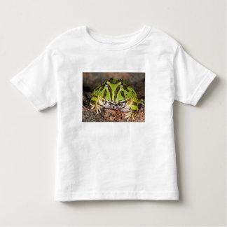 Brazilian Horn Frog, Ceratophrys cornuta, Toddler T-Shirt