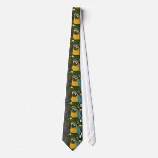 Brazilian Macaw Tie