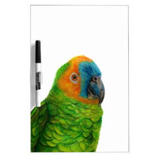 Brazilian Parrot Dry Erase Board
